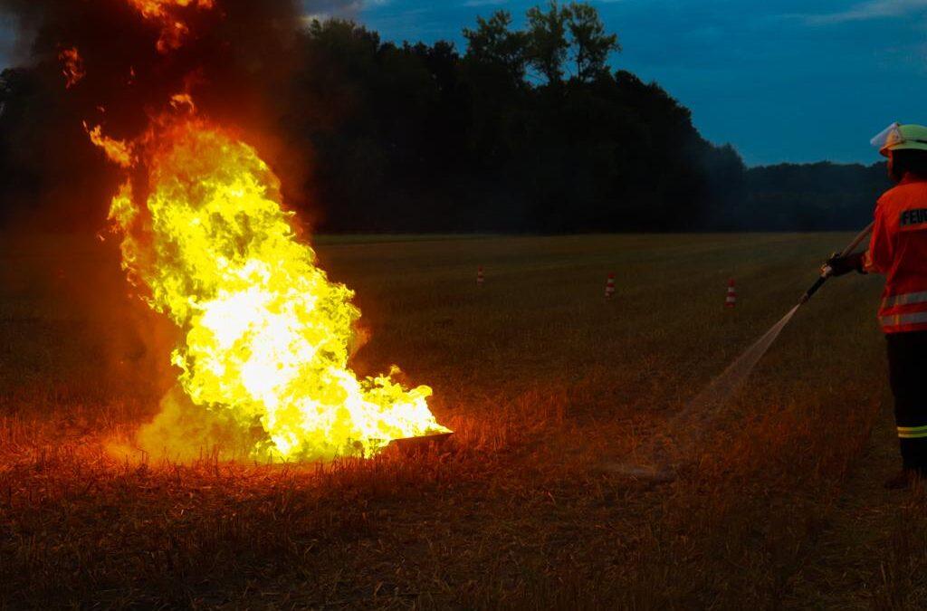 Vegetationsbrand unter realistischen Bedingungen in Westercelle geübt